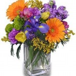 """""""Wild About Spring flowers"""""""