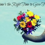 """Anytime is the Right Time for Flowers"""