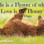 """""""Life is a flower"""""""