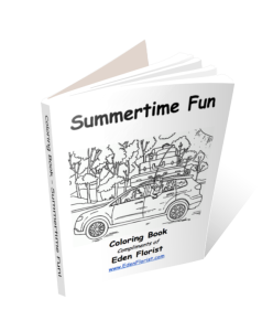Summertime Fun Coloring Book